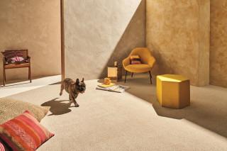 carpetinstallation
