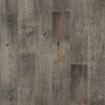 Dockside Driftwood