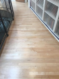 sand and finish hardwood floors boulder co