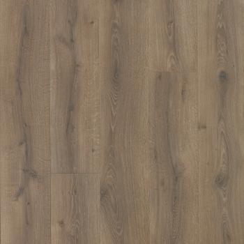 Pelzer Oak